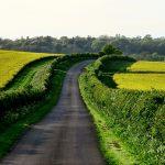 Mindfulness y ciclismo